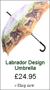 Black Labrador Umbrella