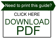 Beginners Guide Download PDF