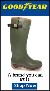 Goodyear Wellingtons