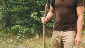 Hiking staff top uses