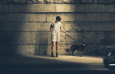Night Time Dog Walking