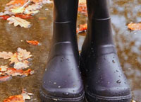Wellies buying guide